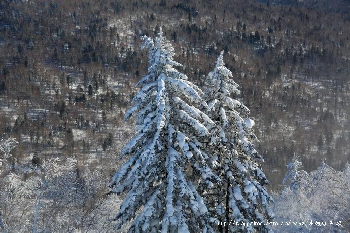 中国雪村二浪河:-36 的壮美冬天 - H哥 - H哥的博客