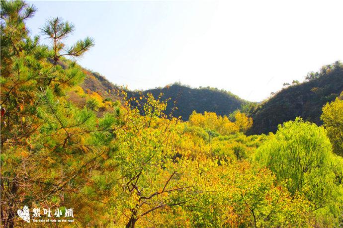 桃源仙谷自然风景区位于密云县石城乡境内,坐落在云蒙山地域,距北京