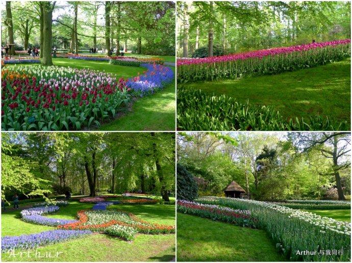 春天最美的库肯霍夫花园等你来 - 卧虎藏龙 - 卧虎藏龙