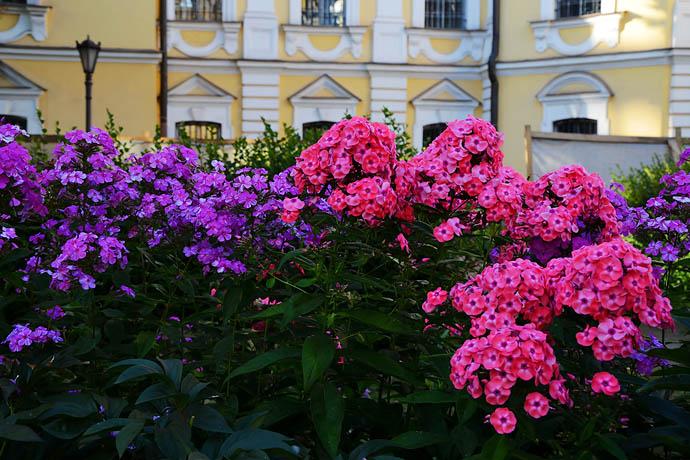 俄罗斯 圣彼得堡涅瓦大街,美人美景看不完 - H哥 - H哥的博客