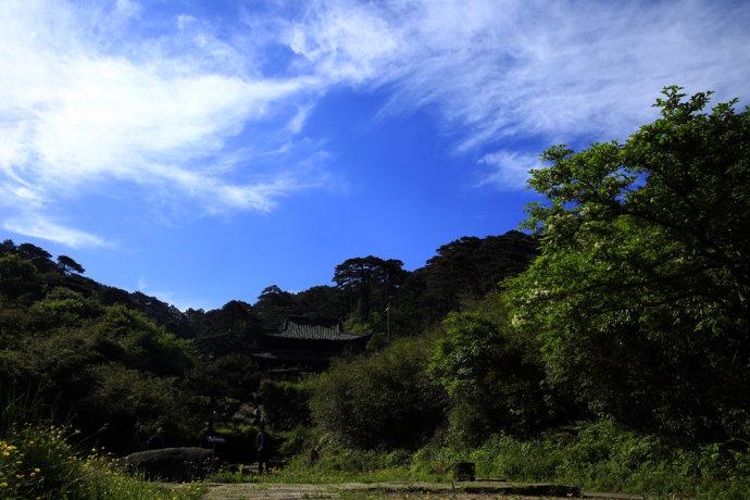 【江西】三清福地品红茶 - 潘昶永 - 往事并不如烟