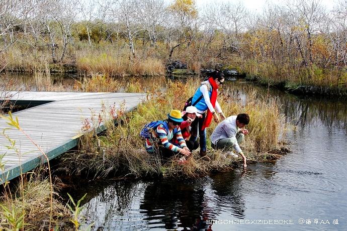 在五大连池的秋天里纵情欢歌 - 草原恋 - 草原恋的图片博客