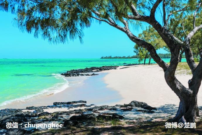 毛里求斯性感私密岛 - 楚鹏 - 楚鹏:生命只有一次