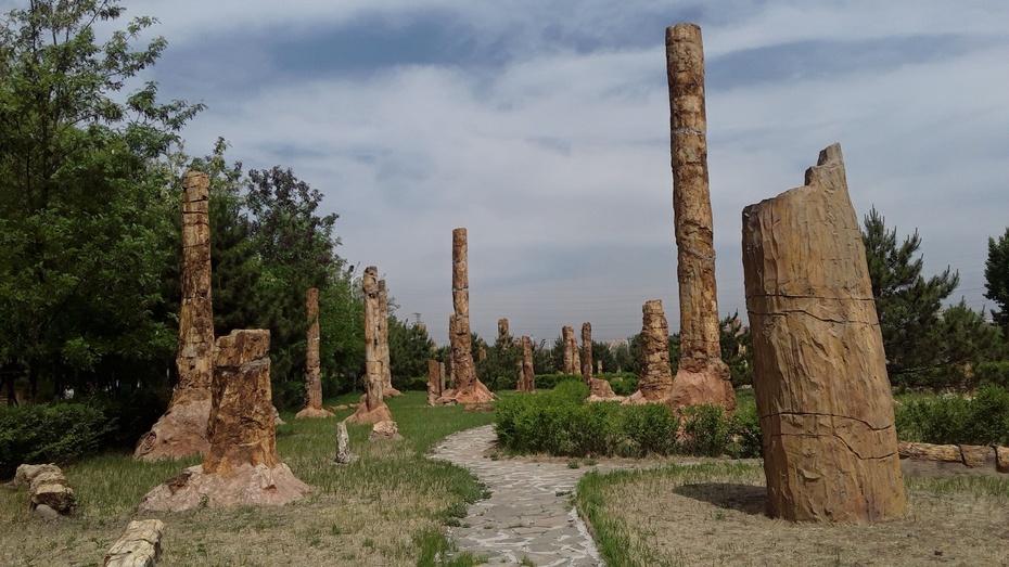 骑行篇:化石公园 - 淡淡云 - 淡淡云