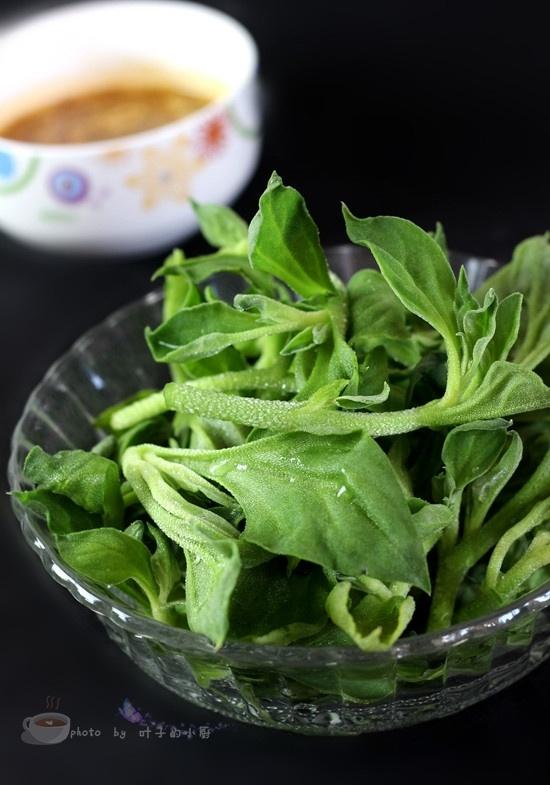 私房酱料汁凉拌冰草 - 叶子的小厨 - 叶子的小厨