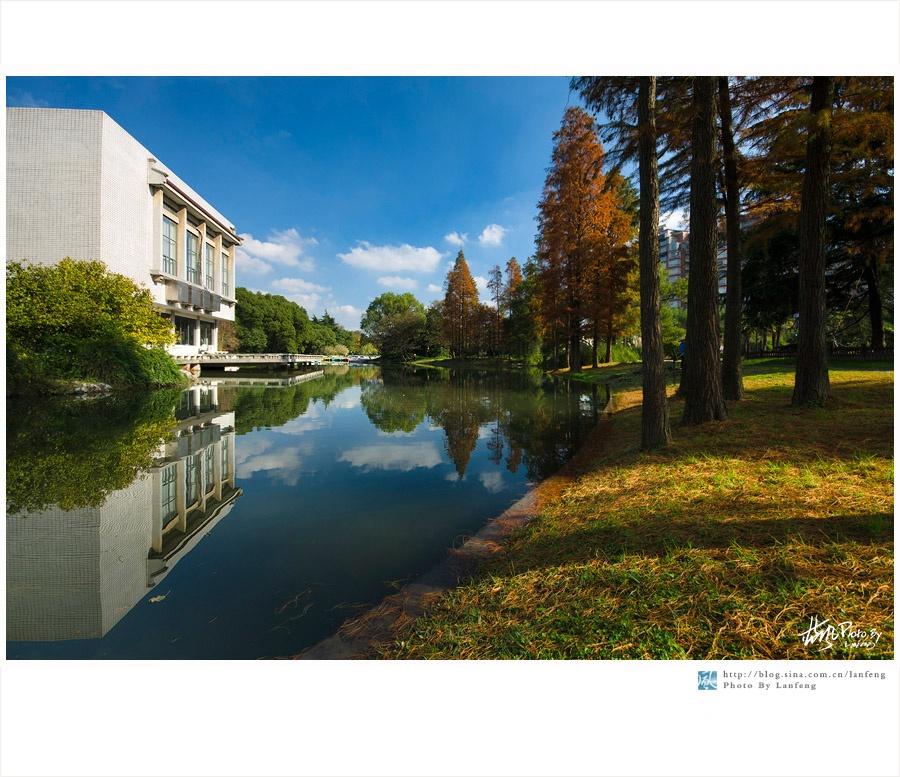【上海植物园】冬日里的绚丽秋色 - 蓝风 - 蓝风的图像家园