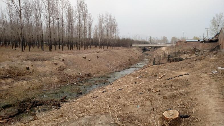 2017-3-30 影随风2017季-18 牤牛河源在哪 - stew tiger - 风过的声音