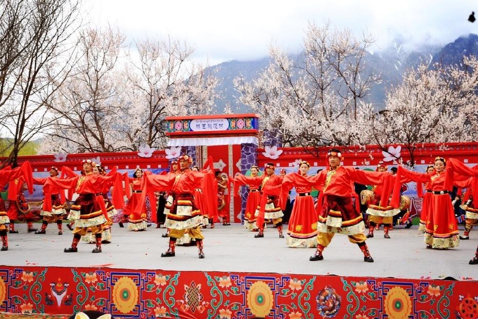 大美西藏:林芝桃花惹人醉 - 余昌国 - 我的博客