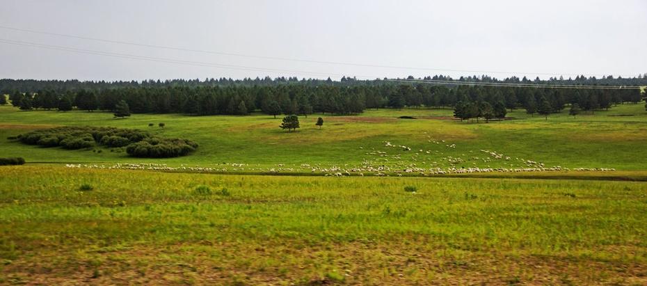 呼伦贝尔草原雕塑,伊敏河畔湿地晚霞—暑期东北行之三十二 - 侠义客 - 伊大成 的博客