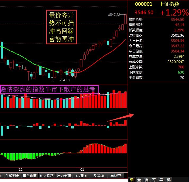 激情澎湃的指数市场下散户的思考 - 股市点金 - 股市点金