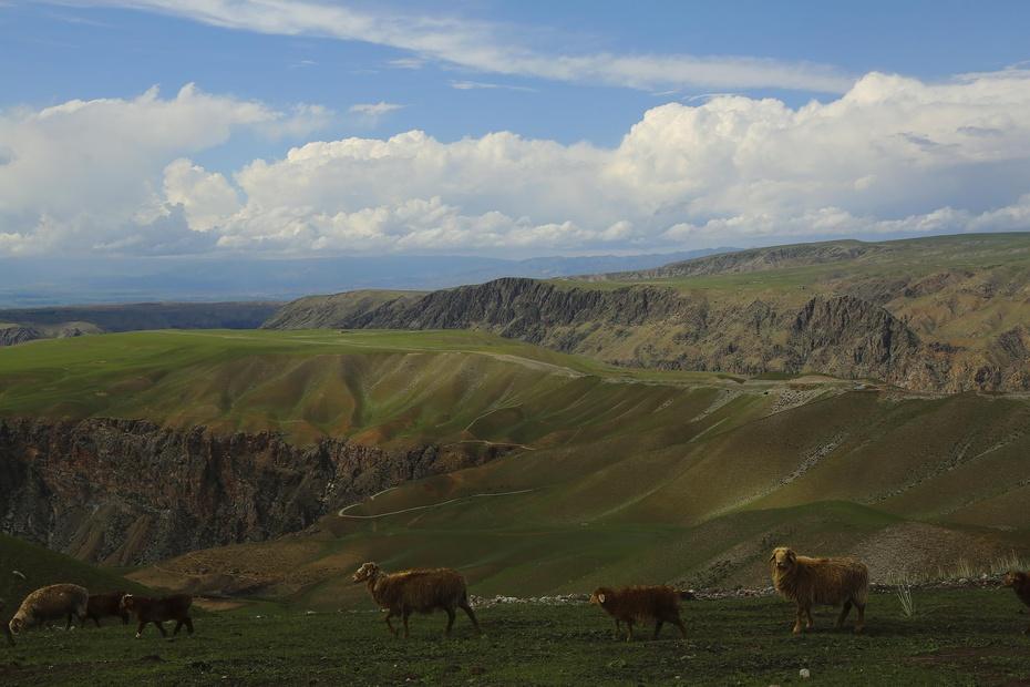新疆行:神奇的阔克苏大峡谷 - 余昌国 - 我的博客