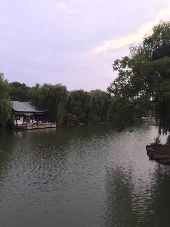 夜游吴江公园 - 蔷薇花开 - 蔷薇花开的博客