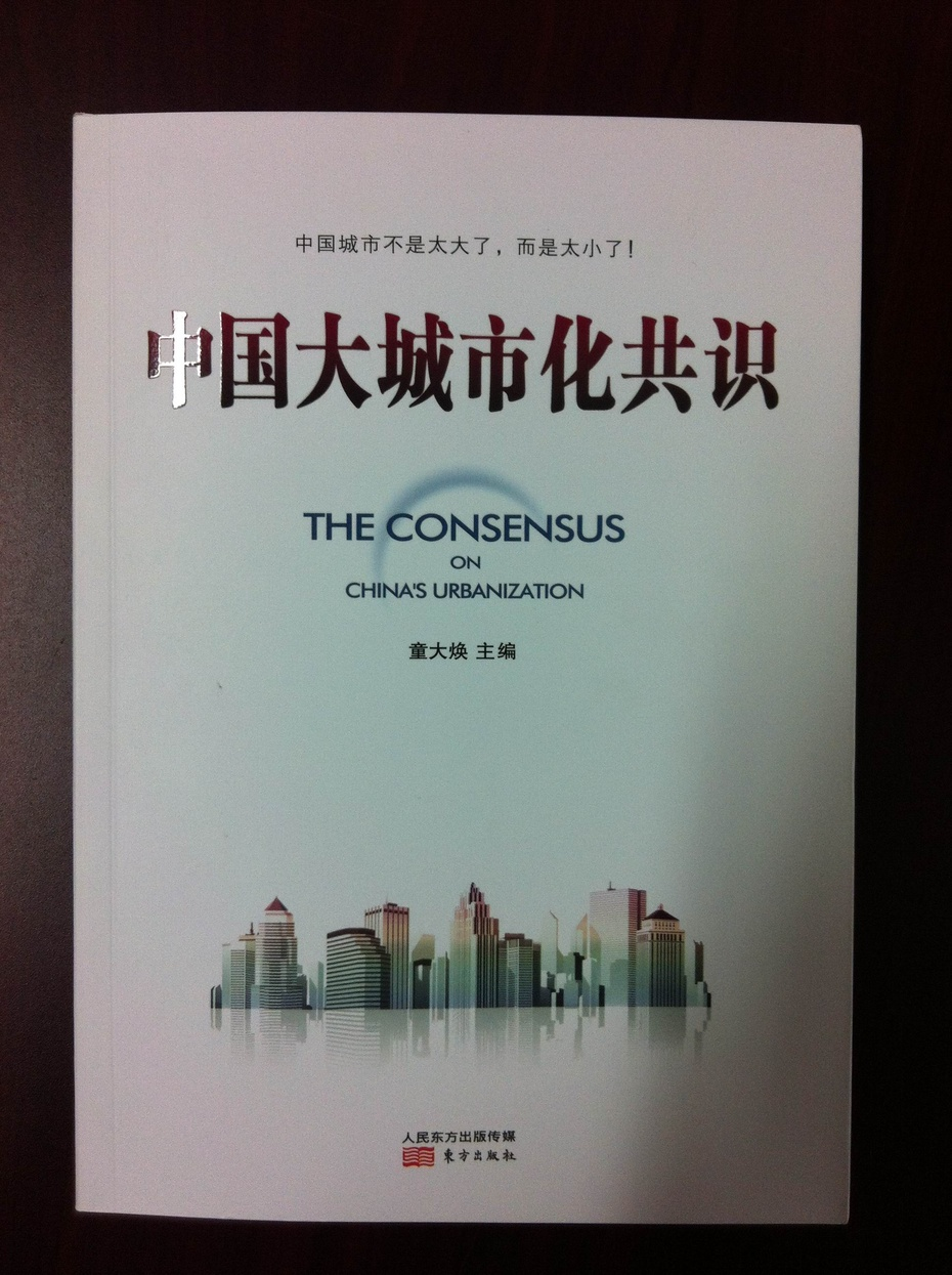 超级大都市支撑中国超级大转型 - 童大焕 - 童大焕中国日记