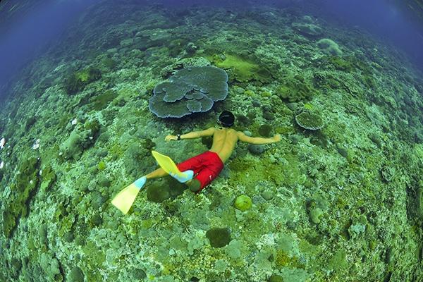 巴厘岛自由行如何玩好每一天?壹巴厘推荐一日游攻略 - 壹巴厘 - 壹巴厘