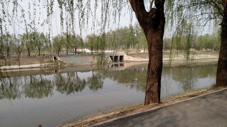 2017-4-6 影随风2017季-20 走南沙河水系-1 看海淀北部新区 - stew tiger - 风过的声音