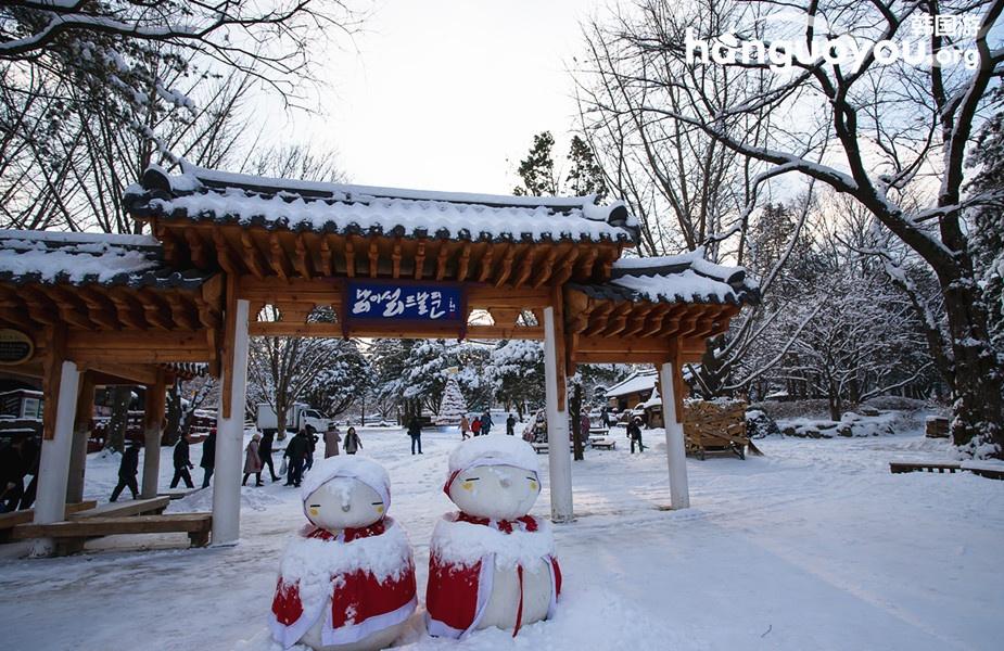 冬季恋歌——冬游韩国南怡岛 - 海军航空兵 - 海军航空兵