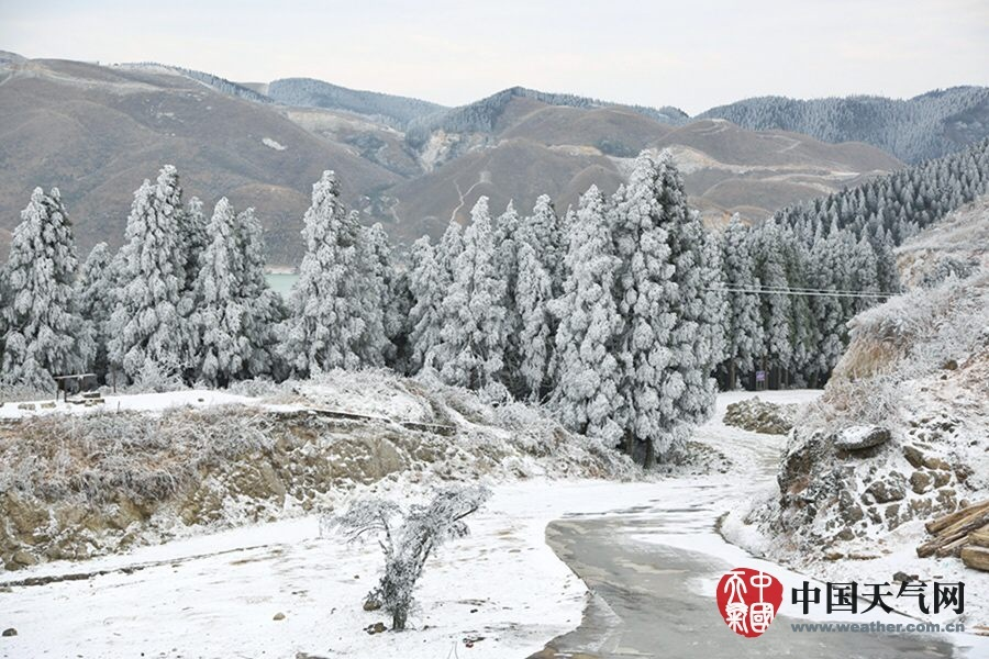 霸王级寒潮下的中国景象5 - 古藤新枝 - 古藤的博客