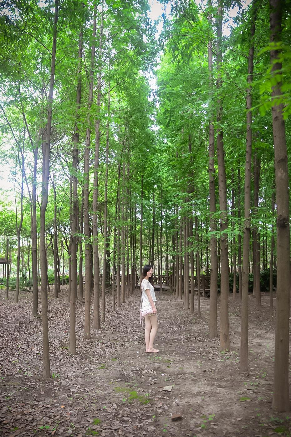 过去3/4的夏天 - Yuri轻松熊控 - Yuri轻松熊控的后花园