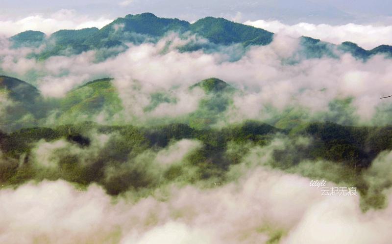 绿色的深海——蜀南竹海掠影 - 海军航空兵 - 海军航空兵