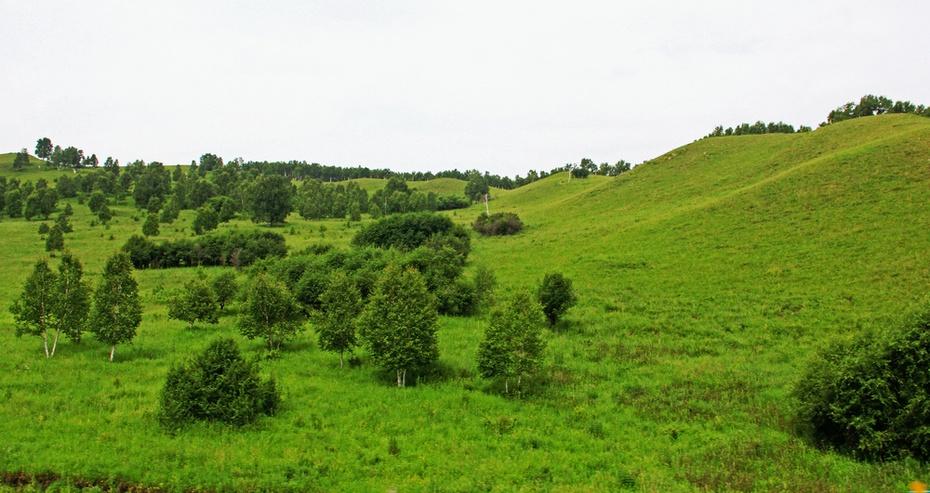 险峻巍峨玫瑰峰,草原森林兴安岭-暑期东北行之六 - 侠义客 - 伊大成 的博客
