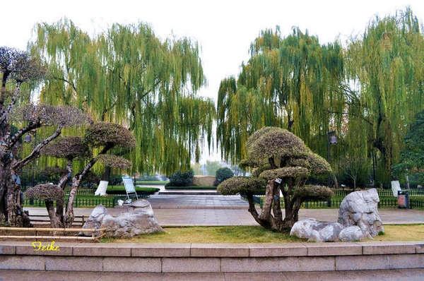 【原创摄影】明湖秋色4 - 古藤新枝 - 古藤的博客