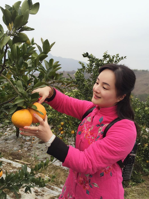 畅游遂昌之四——全国第一 - 蔷薇花开 - 蔷薇花开的博客