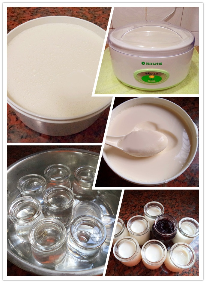 新鲜活力---自制蓝莓酸奶