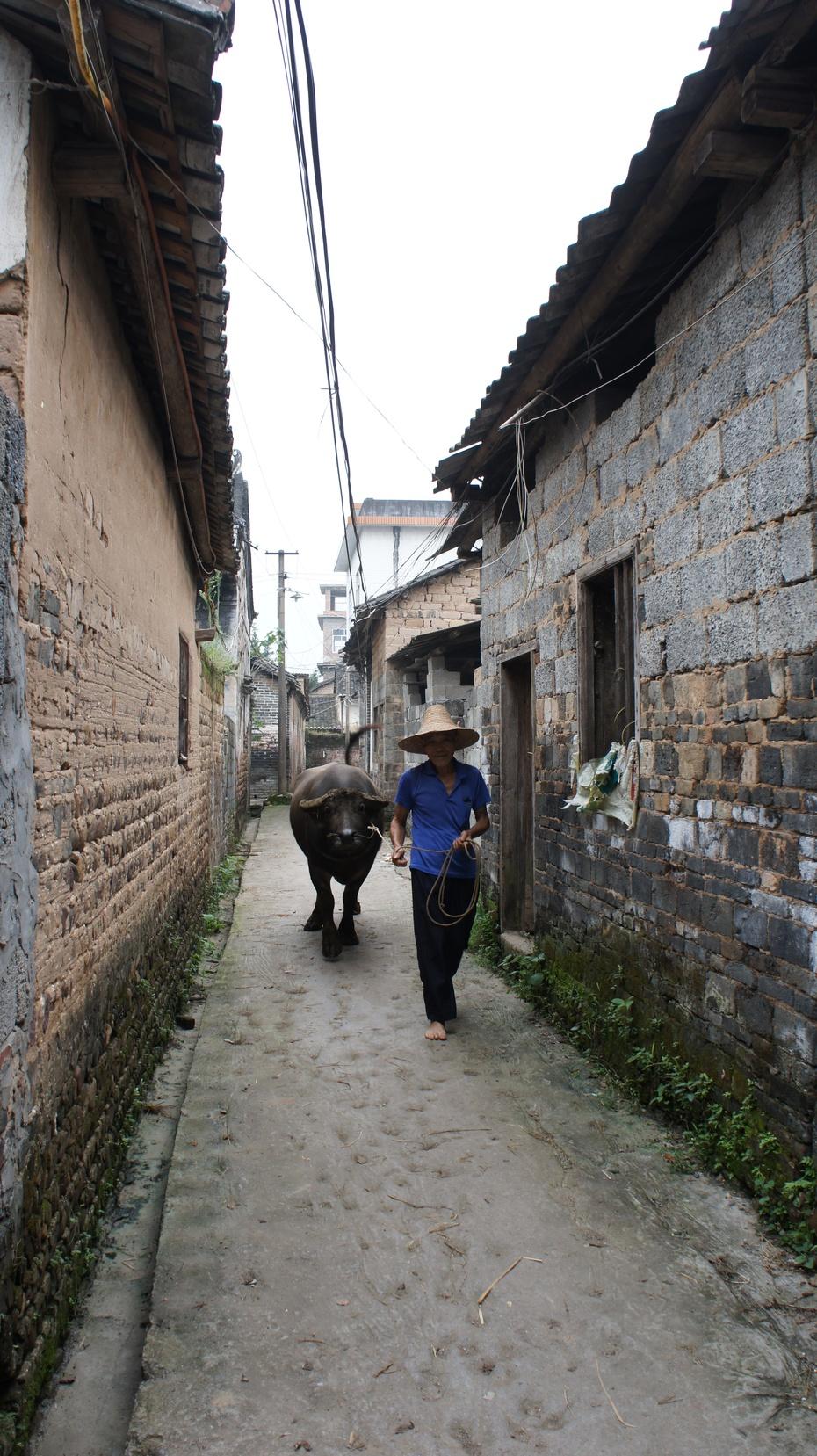 中国传统村落:杨溪村 - 余昌国 - 我的博客