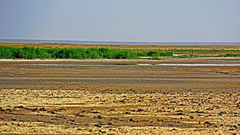 贝尔草原日出日落,乌兰湿地鸟群飞腾-暑期东北行之十 - 侠义客 - 伊大成 的博客