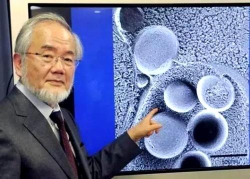 """什么是真的""""科学救国""""?看日本就一目了然 - 追真求恒 - 我的博客"""