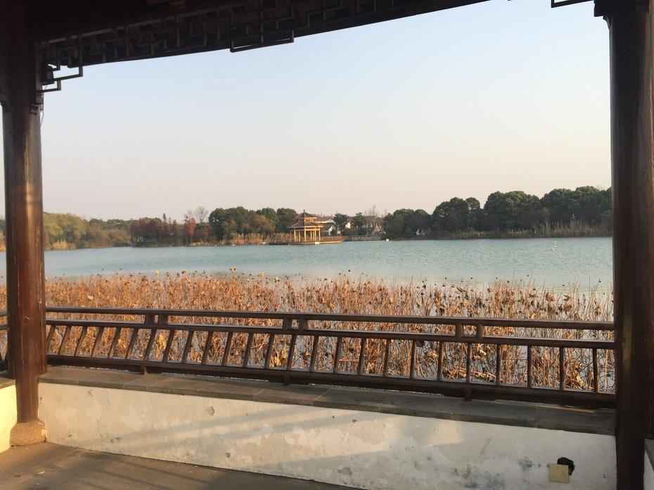 尚湖 - 蔷薇花开 - 蔷薇花开的博客