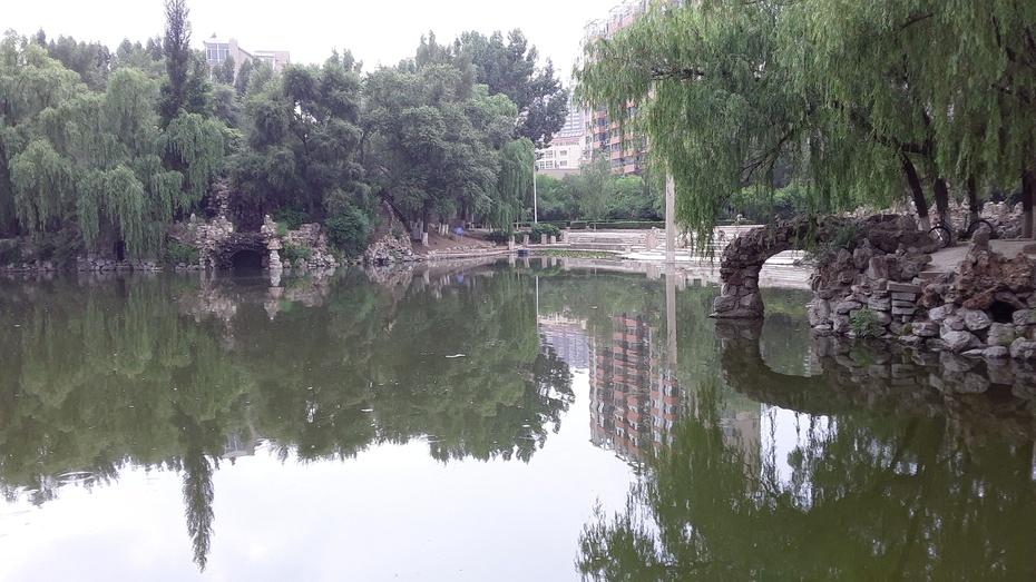 步行篇:凌源公园 - 淡淡云 - 淡淡云