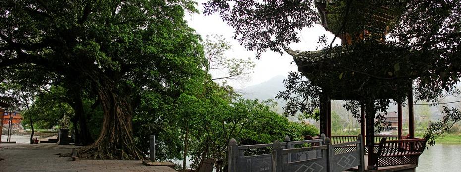 三宝侗寨观三宝,都柳江畔看古榕-黔南游十二 - 侠义客 - 伊大成 的博客