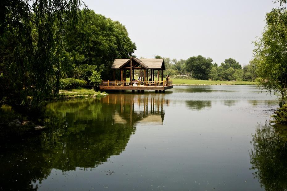 奥林匹克森林公园湿地野趣 - 天神 - 天神的博客