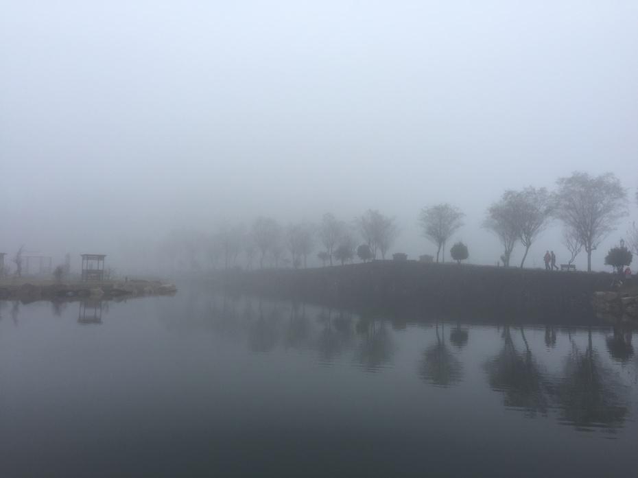 畅游遂昌之六——白马山上白马湖 - 蔷薇花开 - 蔷薇花开的博客