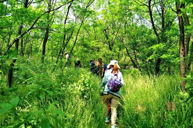 【原创影作】看不够的胡林谷(续) - 古藤新枝 - 古藤的博客