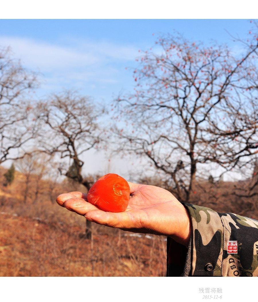 残雪将融,尚有一抹柿子红 - 海军航空兵 - 海军航空兵