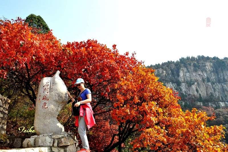 【原创影记】齐鲁观红叶——临朐石门坊1 - 古藤新枝 - 古藤的博客
