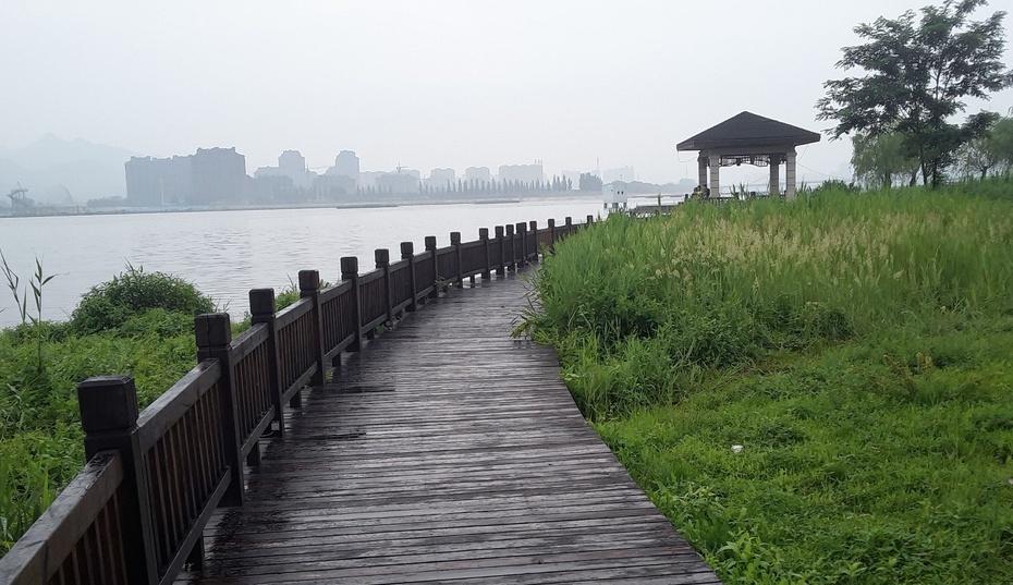 雨后河边 - 淡淡云 - 淡淡云