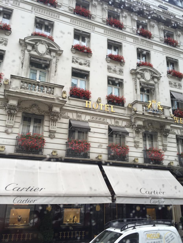欧洲游(四) - 蔷薇花开 - 蔷薇花开的博客