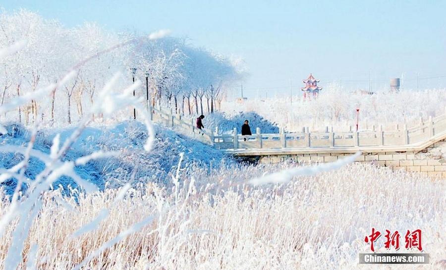 霸王级寒潮下的中国景象1 - 古藤新枝 - 古藤的博客