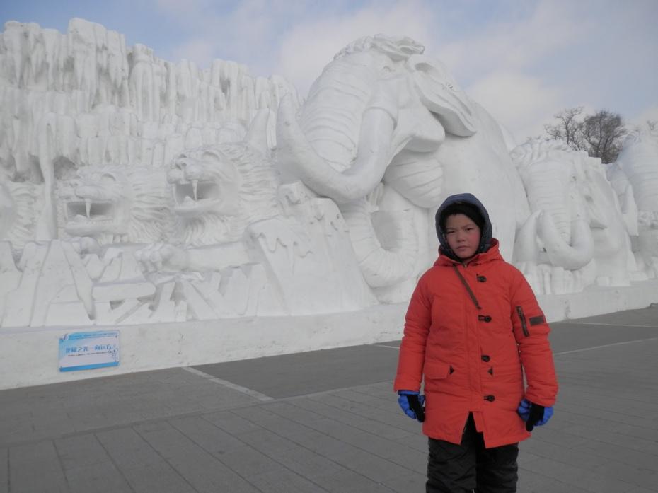 二十二,(五)冰雪之城哈尔滨——雪博会,雪世界(4)