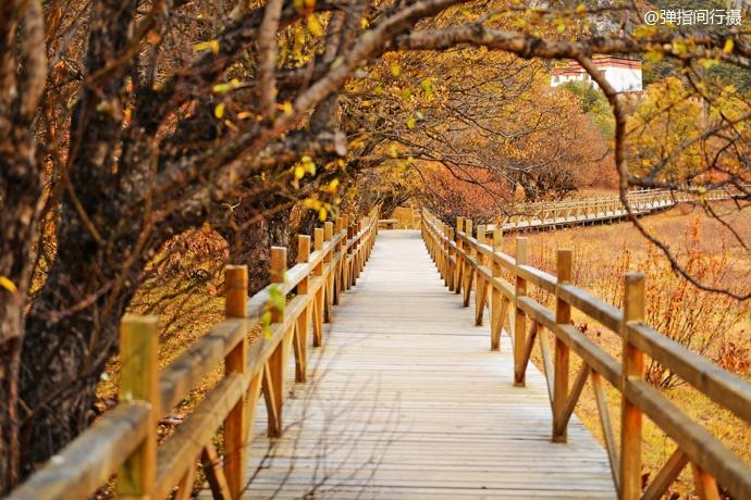十月稻城,世间最美的秋色也不过如此了吧 - 海军航空兵 - 海军航空兵