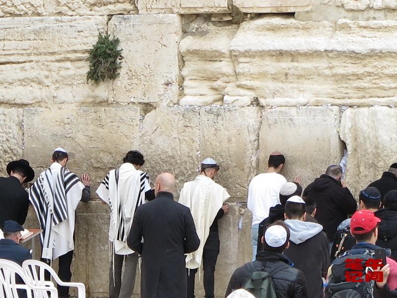 哭泣的西墙--耶路撒冷(1)_图1-8
