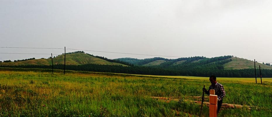 临江壮美油菜花,恩和神奇老鹰嘴—暑期东北行之二十八 - 侠义客 - 伊大成 的博客