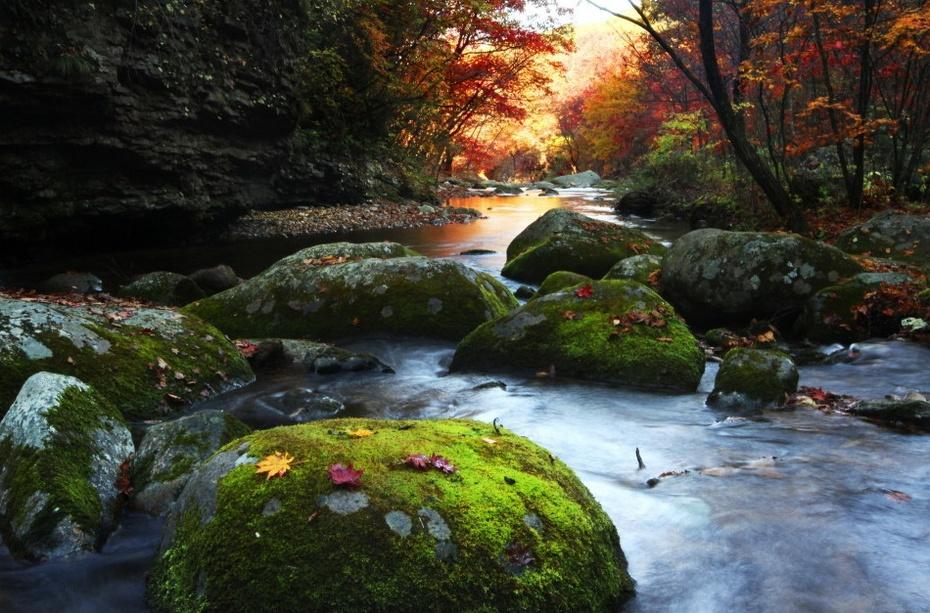 最美秋色 摄影大赛作品精选  - 春晖 - 春晖的博客