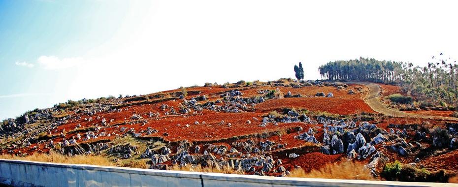 石林,弥勒一路风光,广南体验壮族风情——早春云贵游之2 - 侠义客 - 伊大成 的博客