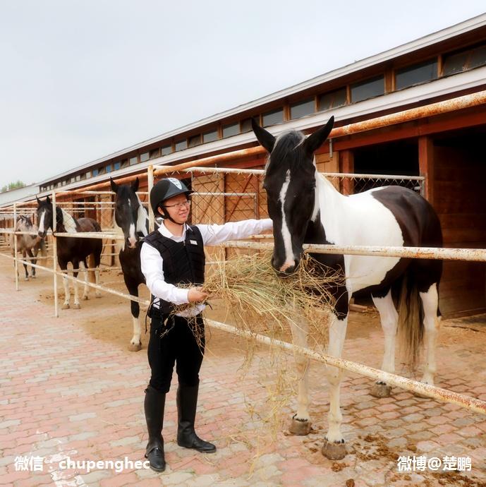 京津冀最牛的亲子度假酒店什么样 - 楚鹏 - 楚鹏:生命只有一次
