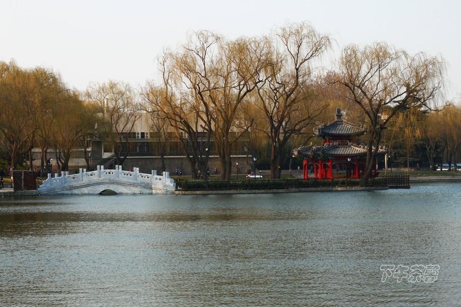 北京初春的一组画面 - 下午茶馨 - 下午茶馨网易博客
