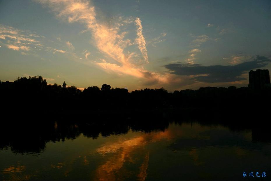 西安夏日夕阳与美丽荷韵 - 海军航空兵 - 海军航空兵